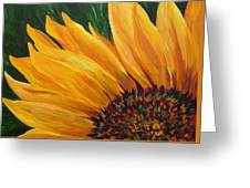 Sunflower From Summer Greeting Card