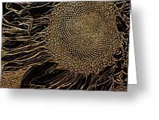 Sunflower Gold Leaf Sketch Greeting Card