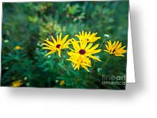 Sunflower Group Session Greeting Card