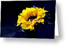 Sunflower II Greeting Card