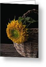 Sunflower In A Basket Greeting Card