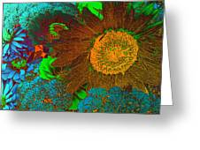 Sunflower In Brown Greeting Card