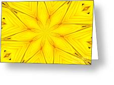 Sunflower Kaleidoscope 1 Greeting Card