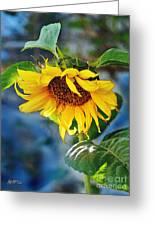 Sunflower Magic I Greeting Card