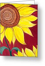 Sunflower On Red Greeting Card
