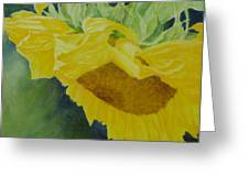 Sunflower Original Oil Painting Colorful Bright Sunflowers Art Floral Artist K. Joann Russell  Greeting Card