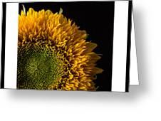 Sunflower Original Signed Mini Greeting Card