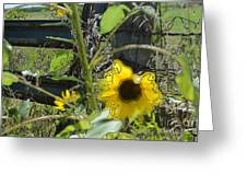 Sunflower Outline 4 Greeting Card