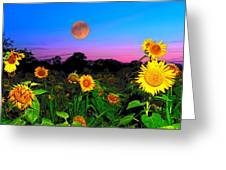 Sunflower Patch And Moon  Greeting Card