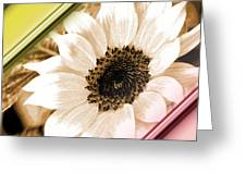 Sunflower Rail Greeting Card