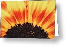 Sunflower Rise Greeting Card