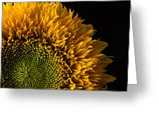Sunflower Square Greeting Card