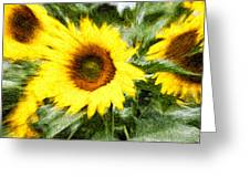 Sunflower Study 3 Greeting Card