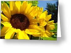 Sunflower Summer Garden Art Prints Greeting Card