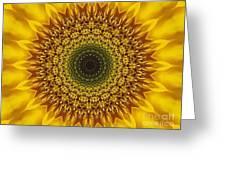 Sunflower Sunburst Greeting Card by Annette Allman