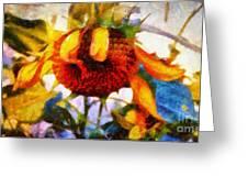Sunflower Tender Greeting Card