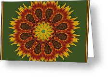 Sunflower Transformation Greeting Card