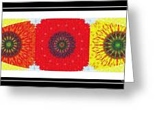 Sunflower Trio - Triptych - Flowers Greeting Card