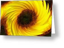 Sunflower Twirl Greeting Card
