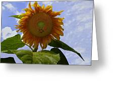 Sunflower With Busy Bees Greeting Card