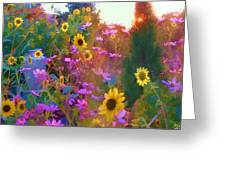 Sunflowers And Cosmos Greeting Card