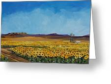 Sunflowers In The Sun Greeting Card