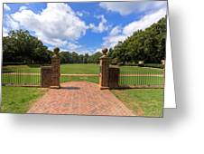 Sunken Garden At William And Mary Greeting Card