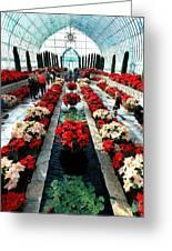 Sunken Garden Como Conservatory Greeting Card
