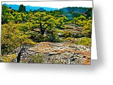 Sunlight On Balanced Rock Trail In Chiricahua National Monument-arizona Greeting Card