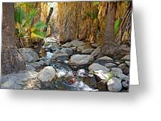 Sunlight Over Rocky Andreas Creek In Indian Canyons-ca Greeting Card