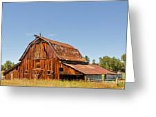 Sunlit Barn Greeting Card