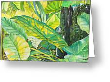 Sunlit Elephant Ears Greeting Card