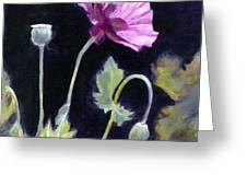 Sunlit - Icelandic Poppy Greeting Card