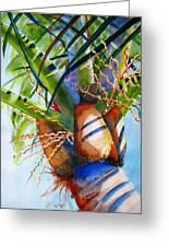 Sunlit Palm Greeting Card