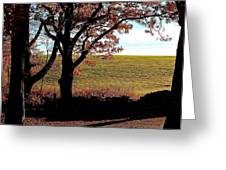 Sunlit Pasture At Moore State Park Greeting Card