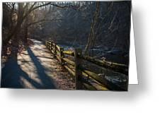 Sunlit Path Greeting Card