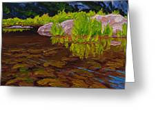 Sunlit Riverbed Greeting Card