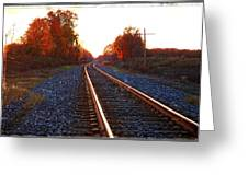 Sunlit Tracks Greeting Card