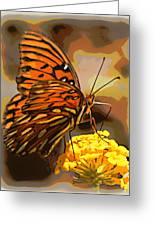 Sunlite Orange Butterfly Greeting Card