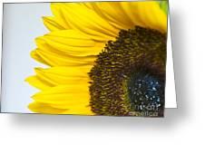 Sunnier Than I  Greeting Card