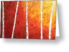 Sunset Birches Greeting Card