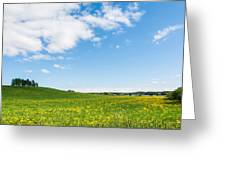 Sunny Day At The Fields Of Gold Greeting Card