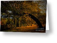 Sunny Fall Afternoon Greeting Card