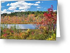 Sunny Fall Day Greeting Card