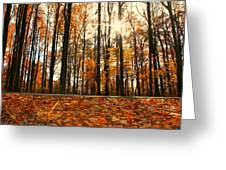 Sunny Fall Day Greeting Card by Candice Trimble