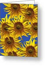 Sunny Gets Blue Greeting Card