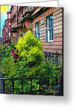 Sunny Morning Mayfair Greeting Card