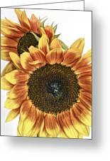 Sunny Pair Greeting Card