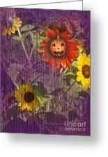 Sunny Pumpkin Greeting Card
