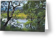 Sunny River Greeting Card